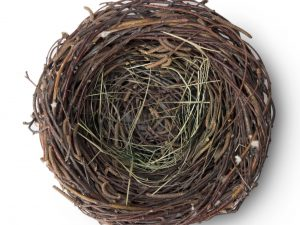 Bird nest on white empty up above view.Easter symbol.